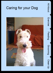 Caring for your Dog Book 2Create a Superstory